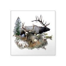 Buck deer bull elk Sticker