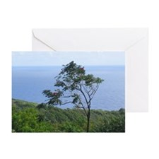 Cute Earth wind Greeting Cards (Pk of 10)