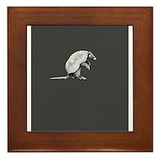 little armadillo Framed Tile