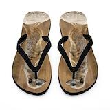 Meerkats Flip Flops