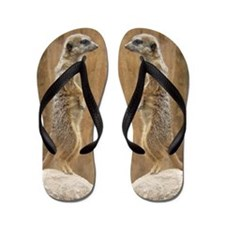 Meerkat Flip Flops
