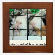 Keep chewing and we'll be out of here fast! Framed
