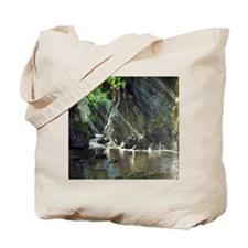 Sunny Alcove Morning Tote Bag