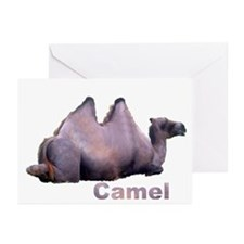 camel 3 Greeting Cards (Pk of 10)