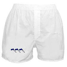 Blue Carrot Ornament Boxer Shorts
