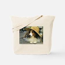 Copy of P8168905.JPG Tote Bag