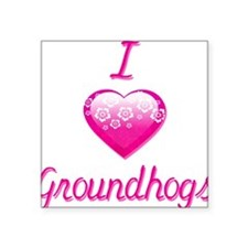 "I Love/Heart Groundhogs Square Sticker 3"" x 3"""