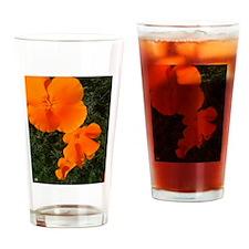 California Poppies Drinking Glass