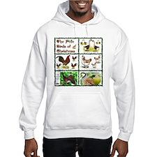 Christmas Birds Hoodie Sweatshirt