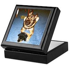 Cool Jindo Keepsake Box