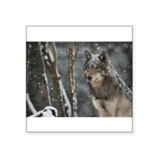 Snowy Lone Wolf Sticker