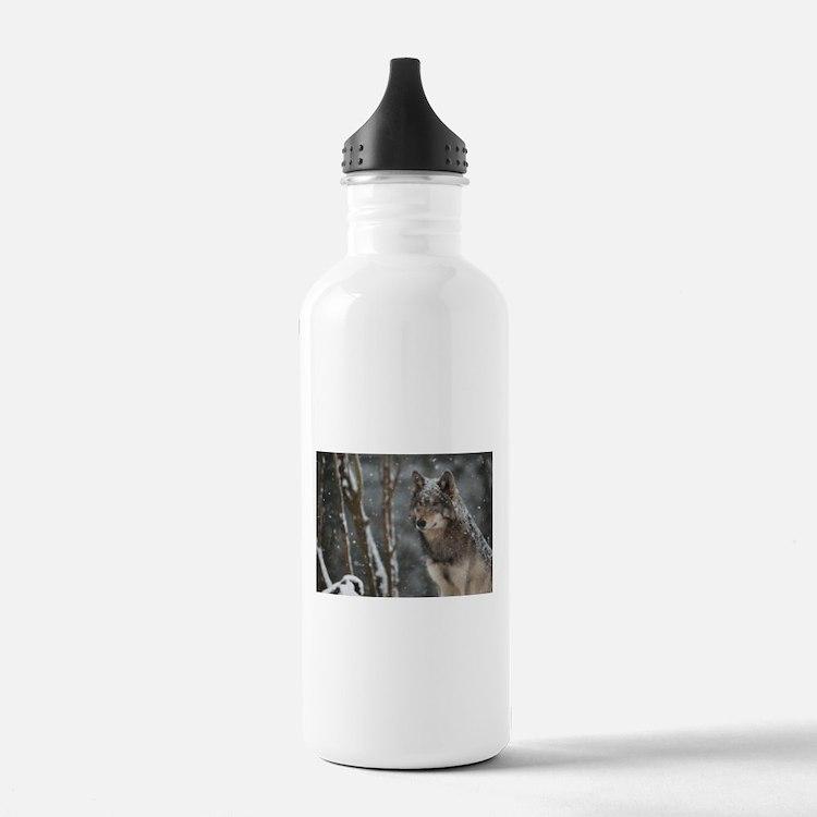Snowy Lone Wolf Water Bottle