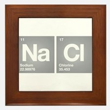NACL Sodium Chloride Don't forget Salt Framed Tile