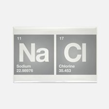 NACL Sodium Chloride Don't forget Salt Rectangle M