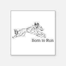 Born to Run - Saluki Sticker