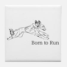 Born to Run - Saluki Tile Coaster
