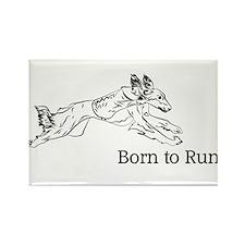 Born to Run - Saluki Rectangle Magnet