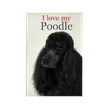 Poodle Love Rectangle Magnet