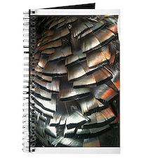 Turkey Feathers Journal