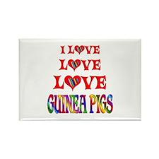 Love Love Guinea Pigs Rectangle Magnet (10 pack)