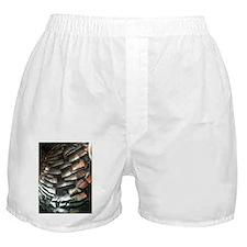 Turkey Feathers Boxer Shorts