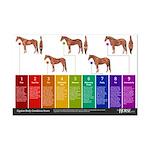 Horse Body Condition Score Mini Poster Print