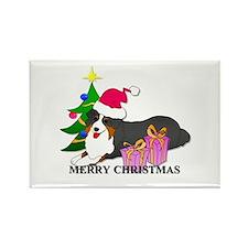 Australian Shepherd Dog Rectangle Magnet (10 pack)