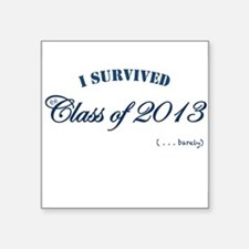 I survived the Class of 2013 Sticker