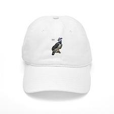 Harpy Eagle Baseball Cap