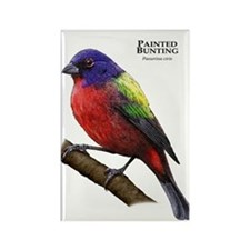Painted Bunting Rectangle Magnet