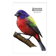 Painted Bunting Postcards (Package of 8)