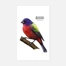 Painted Bunting Decal