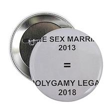 """Same sex marriage = polygamy legal 2.25"""" Button"""