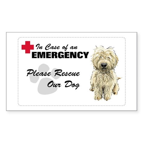 Please Rescue My Dog Rectangle Sticker