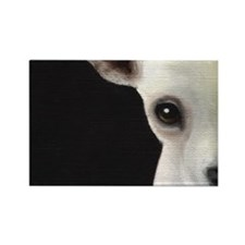 Chihuahuas Rectangle Magnet