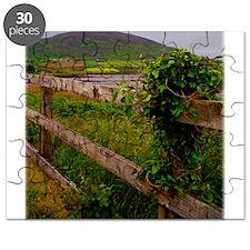 Irish fence.jpg Puzzle