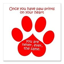 "Paw Prints Square Car Magnet 3"" x 3"""
