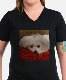 Cute Maltese T-Shirt
