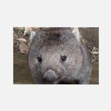 Young Wombat - Rectangle Magnet