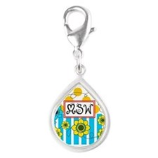 LSW MSW 3 Charms