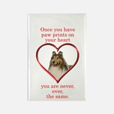 Collie Paw Prints Rectangle Magnet