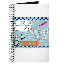 Nursing Class of 2013 2 Journal