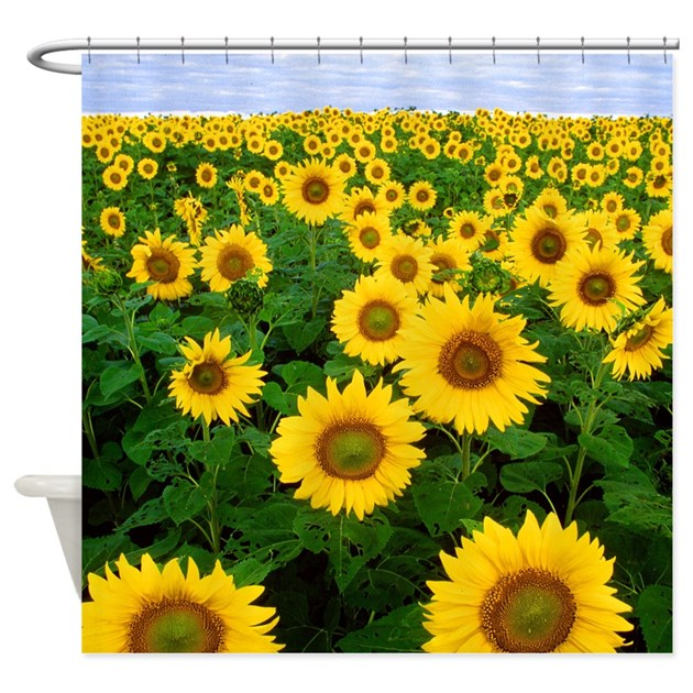 Yellow And Green Sunflowers Shower Curtain By GraphicAllusions