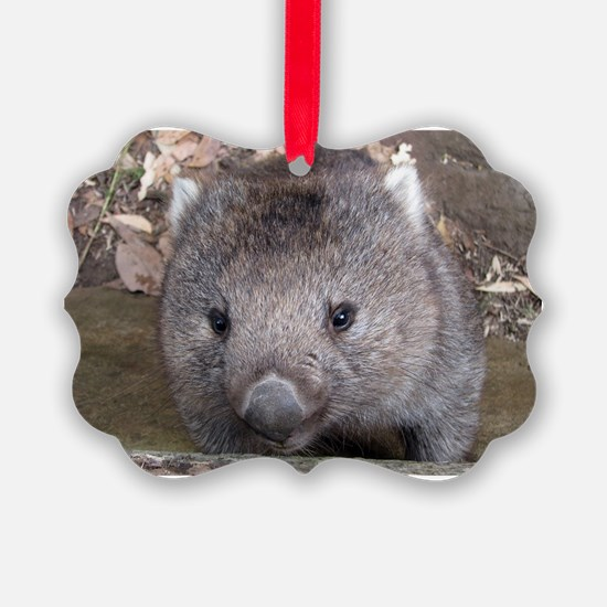 Young Wombat - Ornament