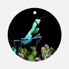 Helaine's Praying Mantis 2 Ornament (Round)