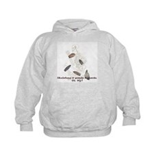 Skeletons, Points, & Sherds Hoodie