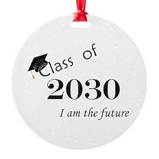 Born in 2012/Class of 2030 Ornament