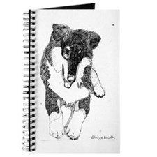 Tri Collie Pup Journal