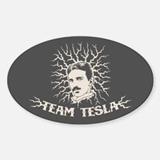 Team Tesla Decal