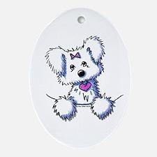 Pocket Maltese Oval Ornament